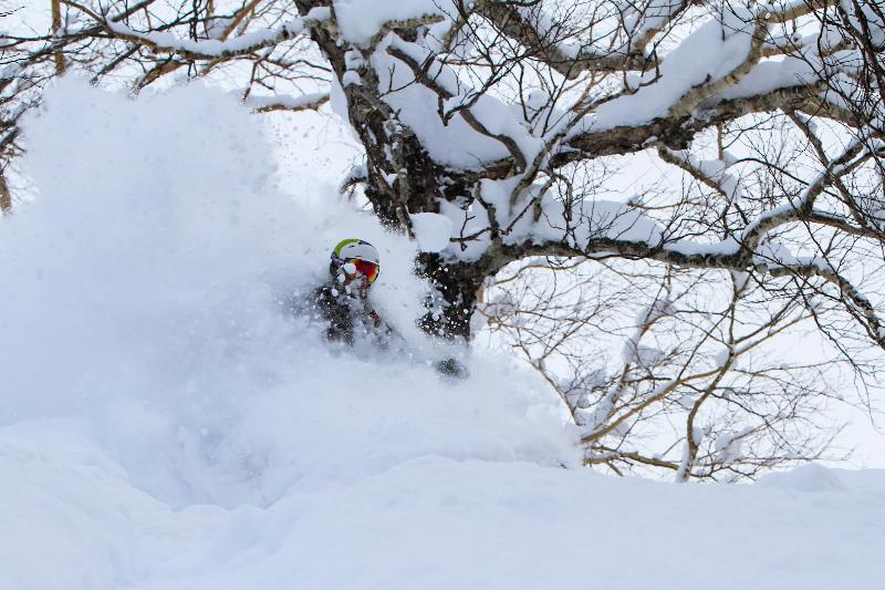 Light and deep Tree skiing