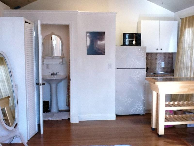 Entry area to bathroom and open kitchen area. Kitchen & bathroom has everything you need