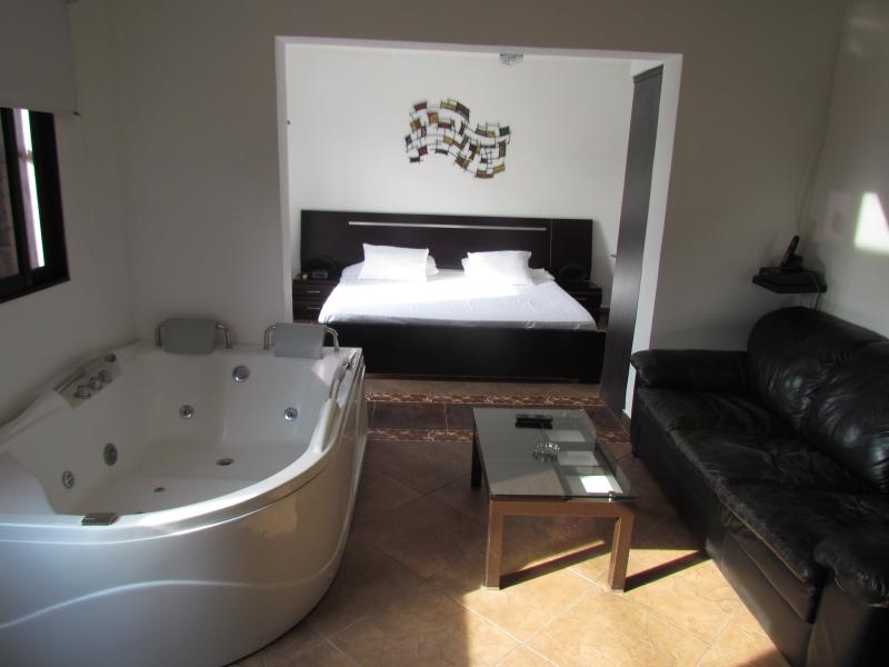 Executive studio middle of everything hot tub, AC, location de vacances à Girardota