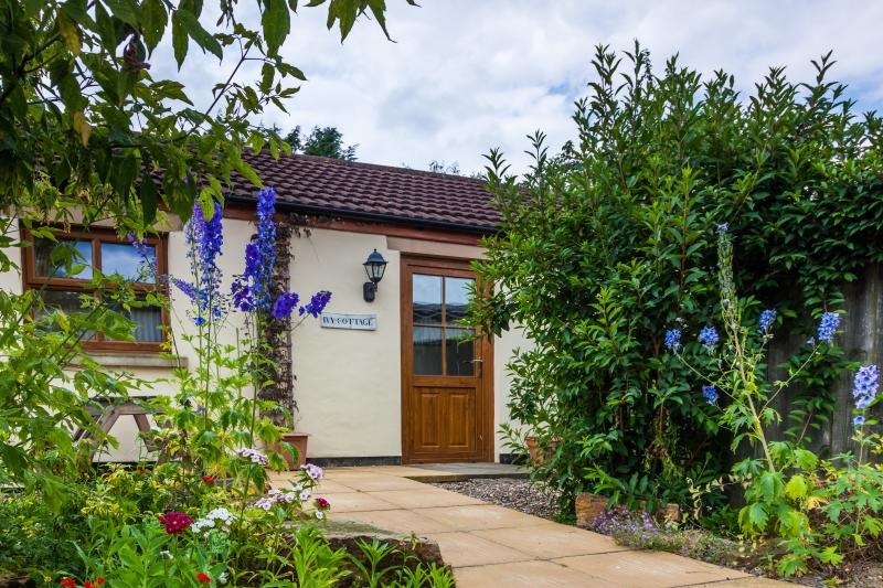 Ivy Cottage, sleeps 4.  Yes, we have holiday cottages too!