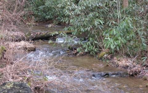 Creek vorne mit Sitzecke und firepit