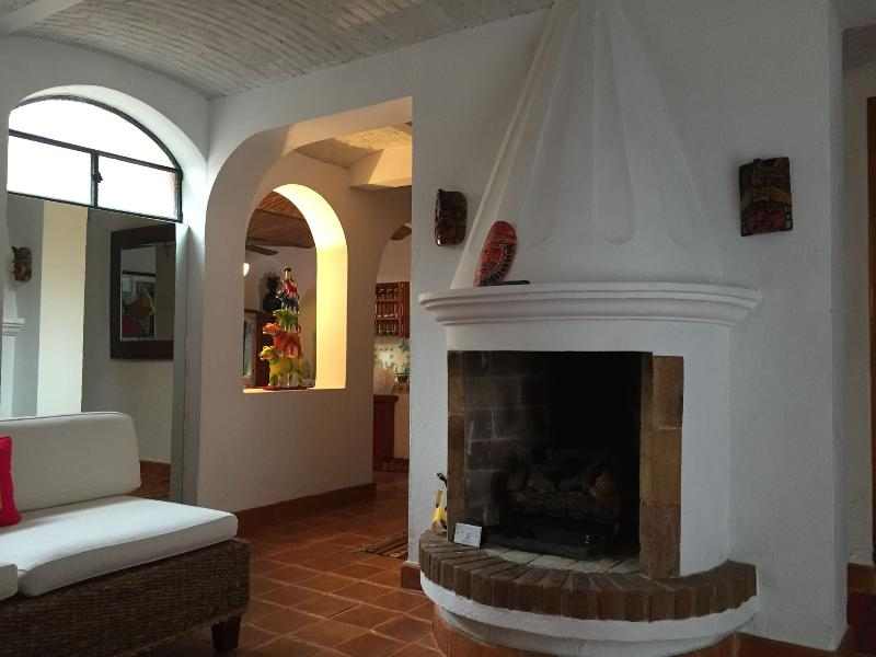 Living Room fireplace with gas logs