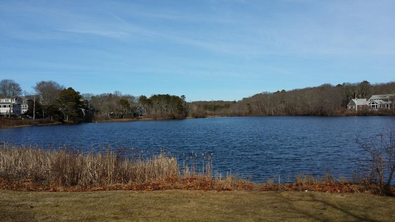 Fresh water pond nearby 1/4 mile, good for fishing and kayaking