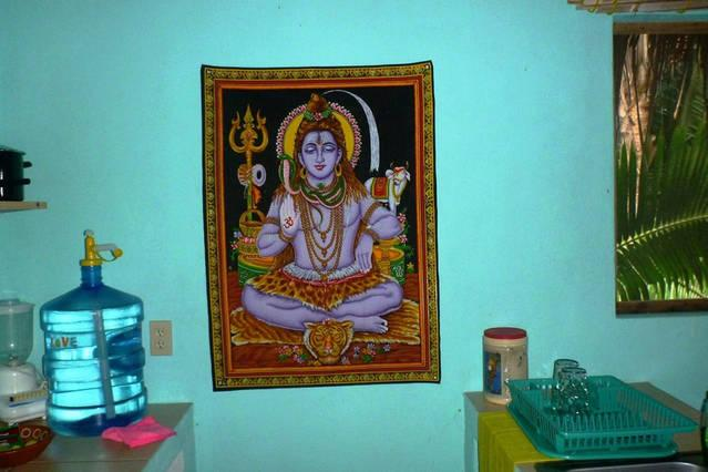 Lord Shiva tapestry kitchen