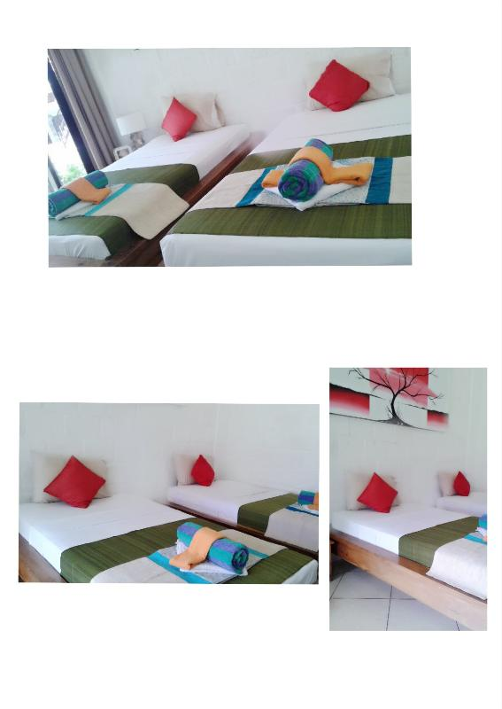 One of our studio room have 2 single beds / double bed in room