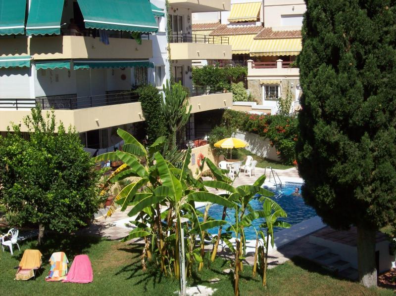 Garden/ swimming pool