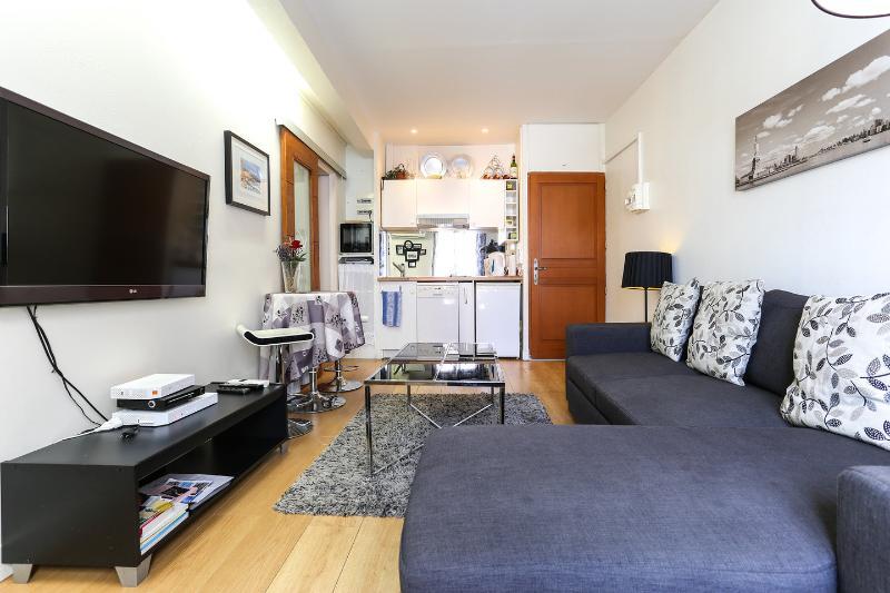 Beautiful Apartment in Antibes France, alquiler vacacional en Antibes