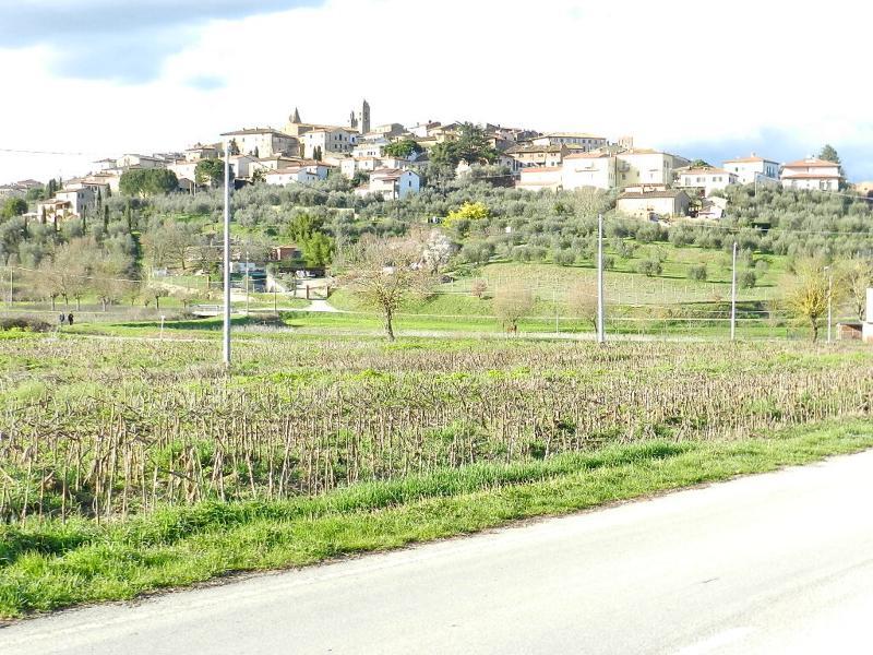 veduta della città di Monte San Savino