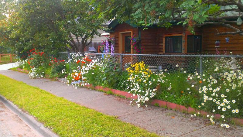 Summer flowers at Cedar Alley in Anchorage, Alaska