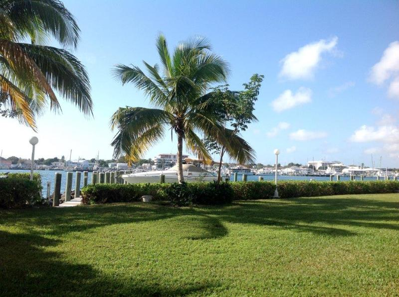 Excellent view of the Nassau Harbour