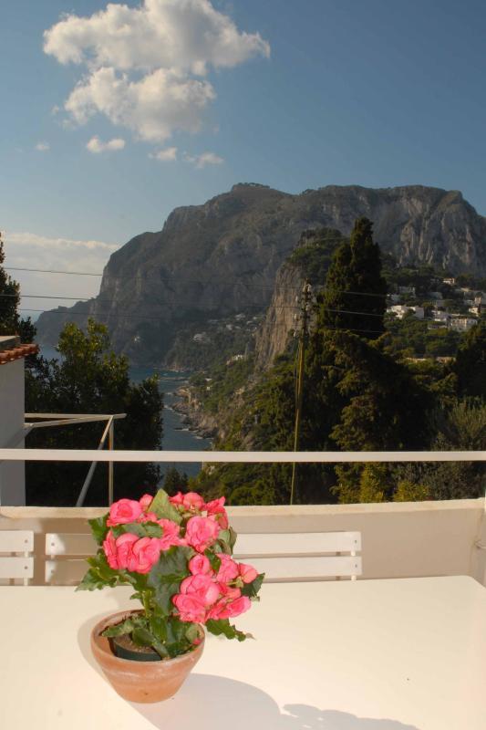 Marina Piccola from Terrace
