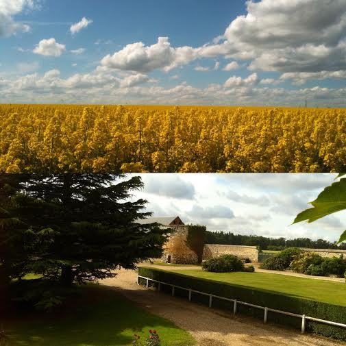 Le CLOS DU MANOIR, un oasis de repos et de détente en plein cœur des champs et à 85km de Paris.