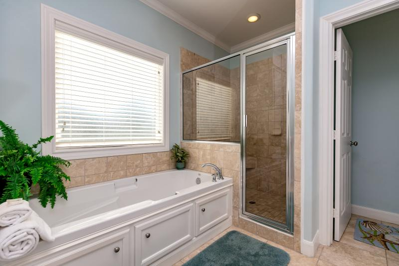 Master bath with glass shower and large tub.