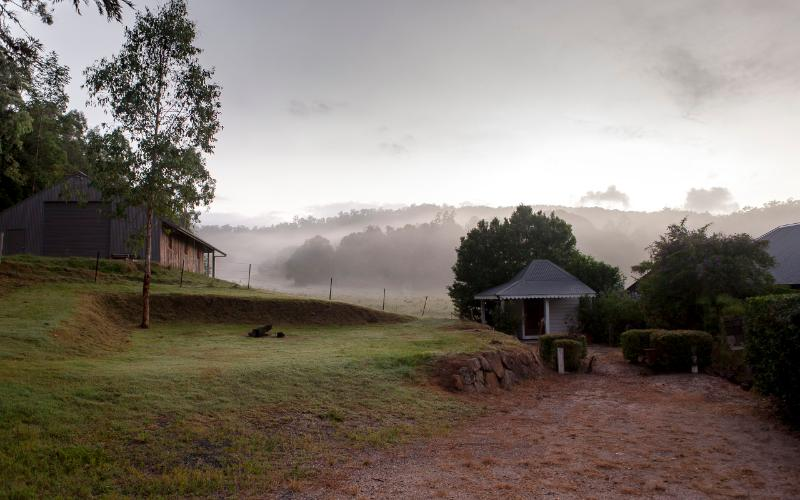 Misty m orning at Terranora Homestead