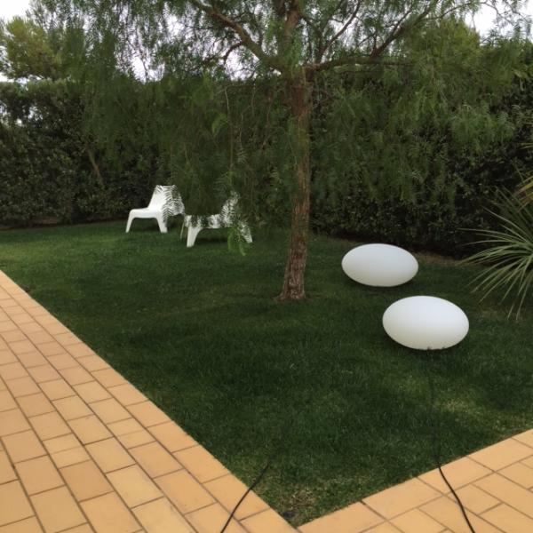 The Lawn. Automatic watering  system will keep it green.