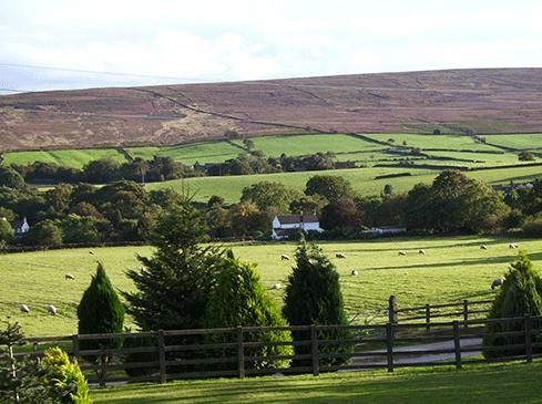 Stable Cottage Commondale commondale, holiday rental in North York Moors National Park