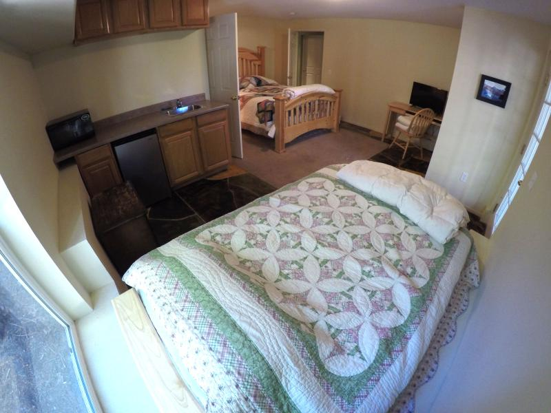 Another view of the granny quarters. Notice the kitchenette and door to the back deck.