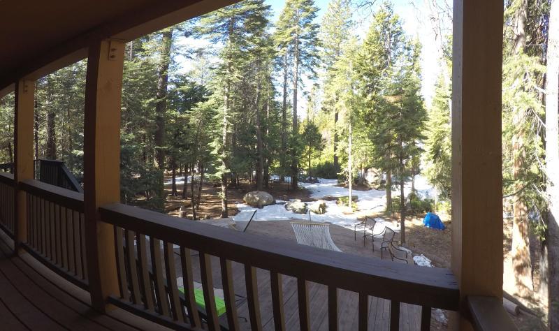 Back yard views.