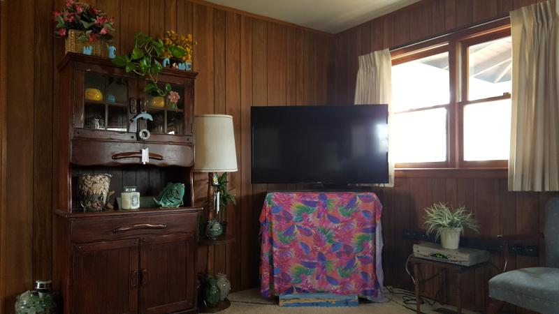 46'flat panel smart television with Netflix