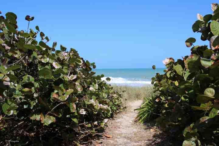 Camino desde el patio trasero que conduce a la playa.