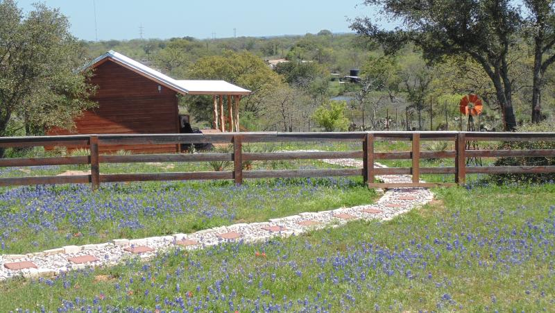 Bluebonnets and other wildflowers await