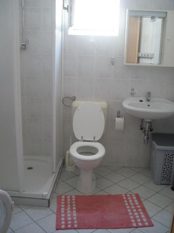 A1(2+2): bathroom with toilet