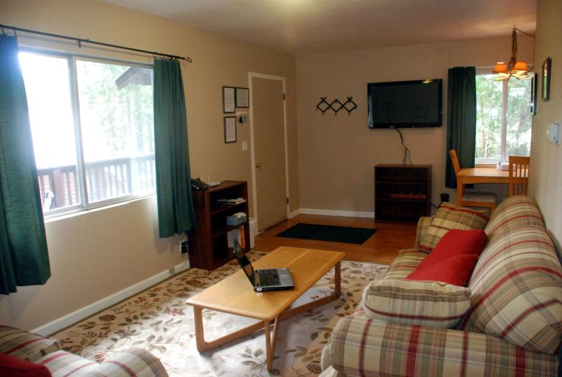 The living room is bright and comfortable.  Flat screen TV and WiFi included!