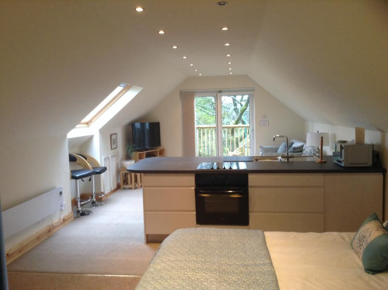 Spacious holiday Studio, vacation rental in Falkirk