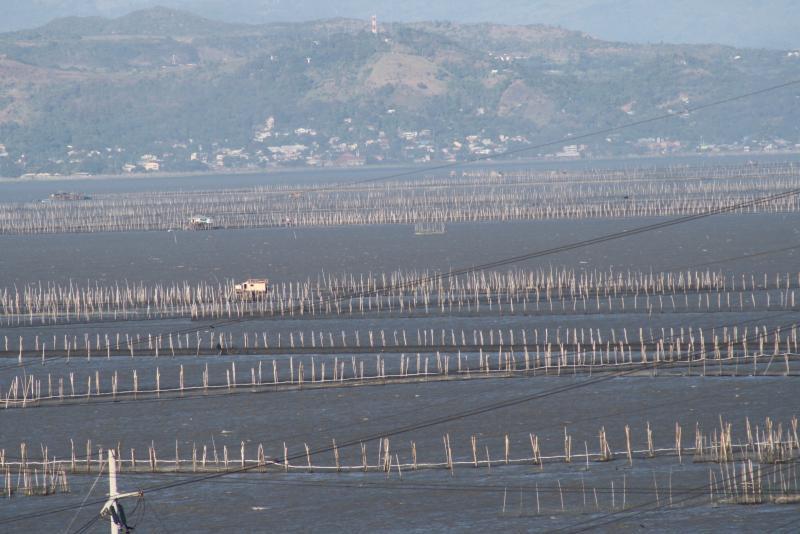 Fish pens in Laguna de Bay