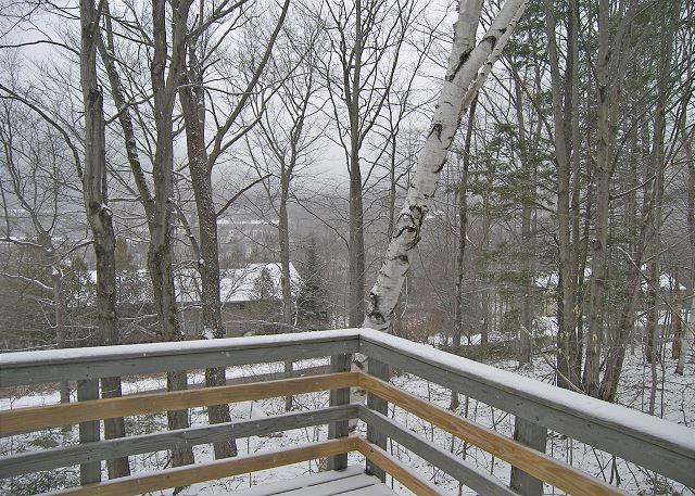 Alternate Winter View from Deck