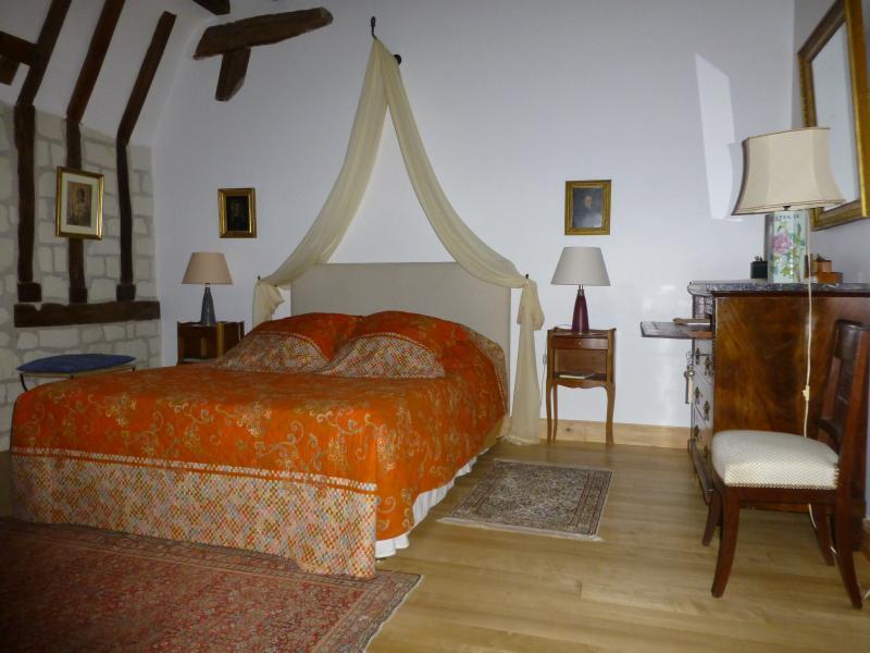 La chambre Richard 'Coeur de Lion', vacation rental in Couziers