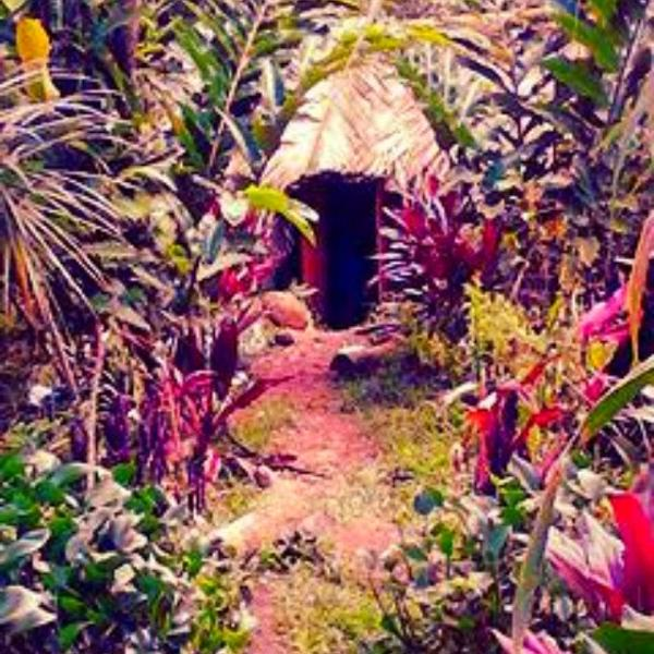 Dreamland Healing Sanctuary, holiday rental in Dominica