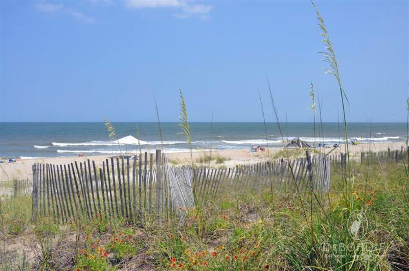 Vegetation,Coast,Outdoors,Sea,Water