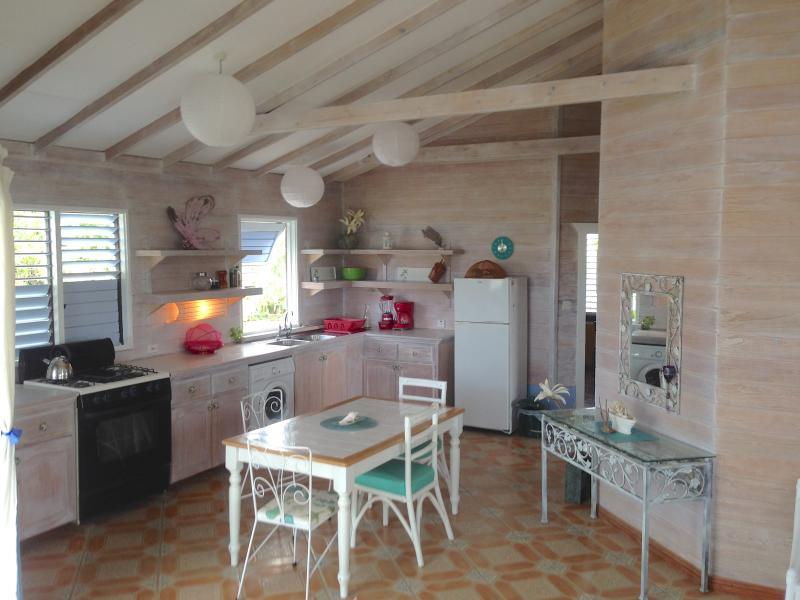 apartment starlight kitchen