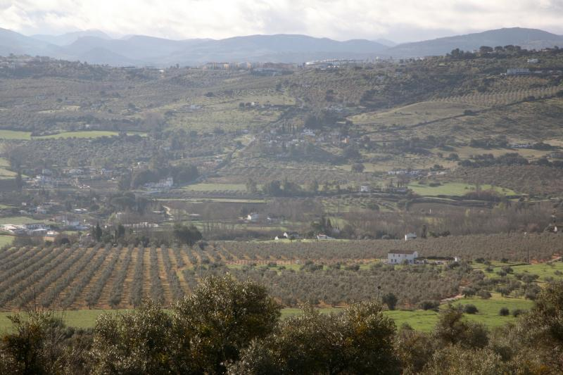The house sits in a lush valley surrounded by olive groves with Ronda in the distance.