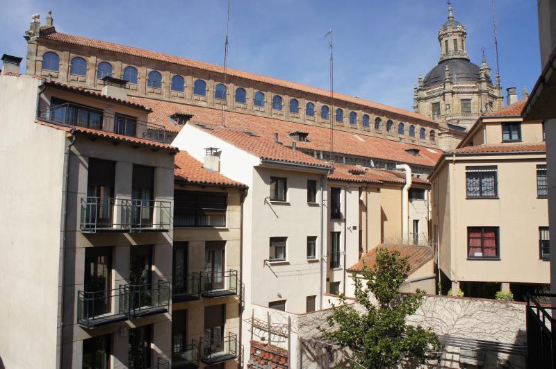 Monumental Apartments Salamanca, holiday rental in Valdemierque
