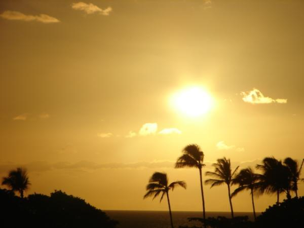 To complete your day enjoy a typical Maui Sunset.
