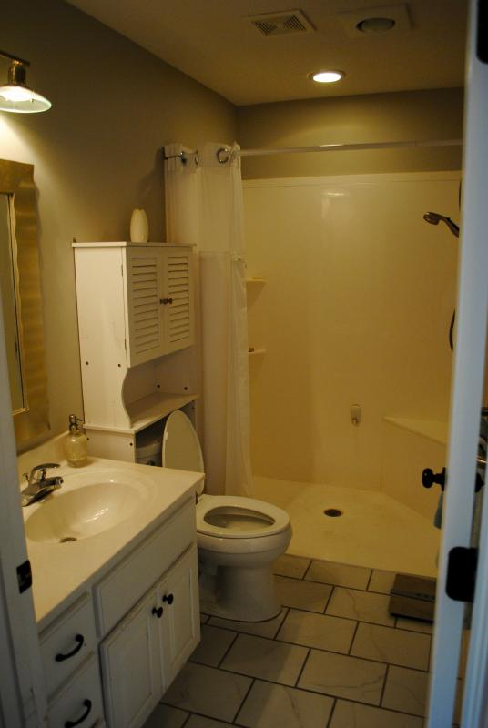 accessible zero-entry shower