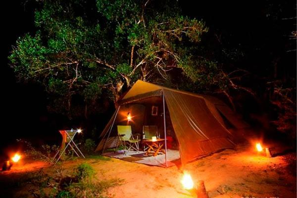 yala safari team, vacation rental in Thanamalwila