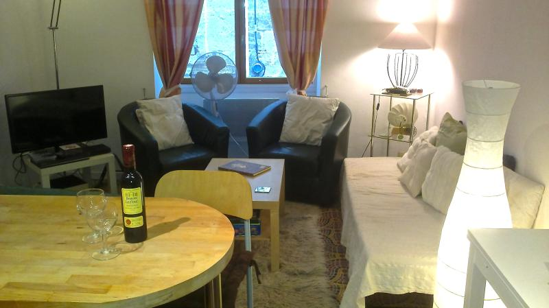 Charming, quiet town house in Pezenas, holiday rental in Pezenas