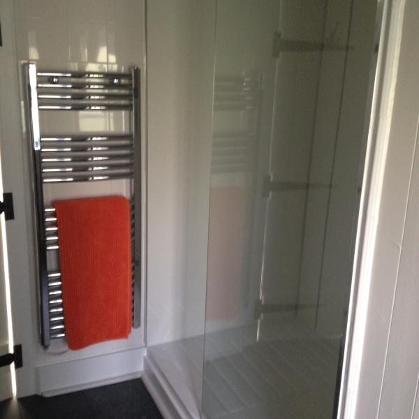 New downstairs walk-in shower room