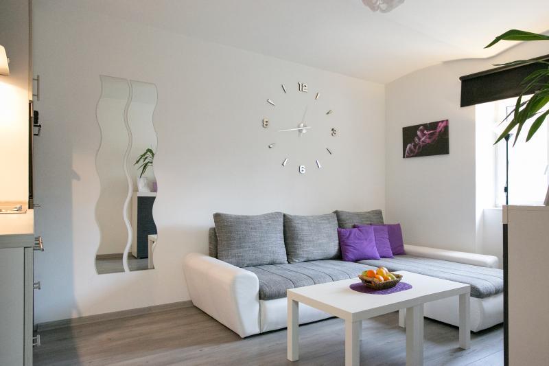 Purple Haze Central Apartment, holiday rental in Pancevo