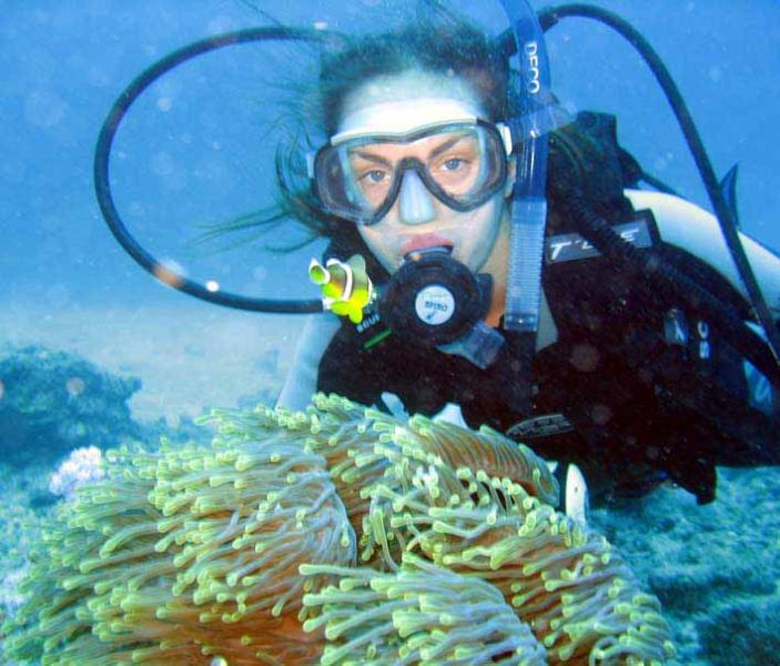 3 min driv to Atlantis Diving who will show you  living coral reef adore with rainbows of color fish