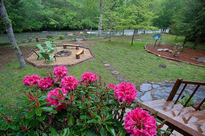 Indigenous wild Rhododendrons in full bloom from the porch swing view.