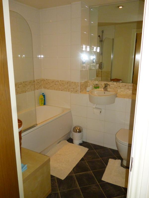 Salle de bains, baignoire avec douche, lavabo toilettes, sèche-serviettes