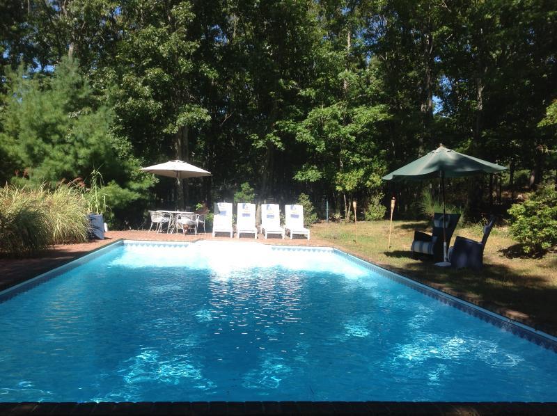 Pool 20x40