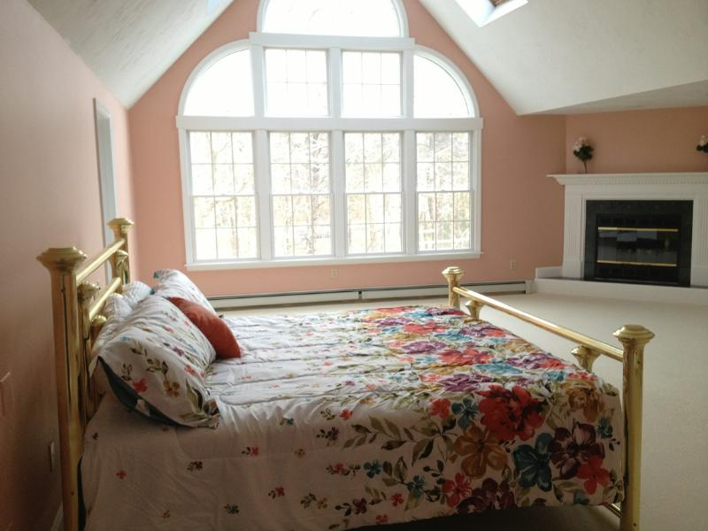 Master Bedroom-King size Brass Bed, cathedral ceiling, 2 ceiling fans