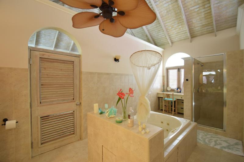 Master bath - Jacuzzi tub, shower for two, makeup area with seating
