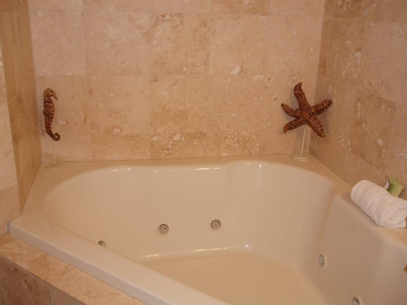 Garden Tub in Master Bathroom