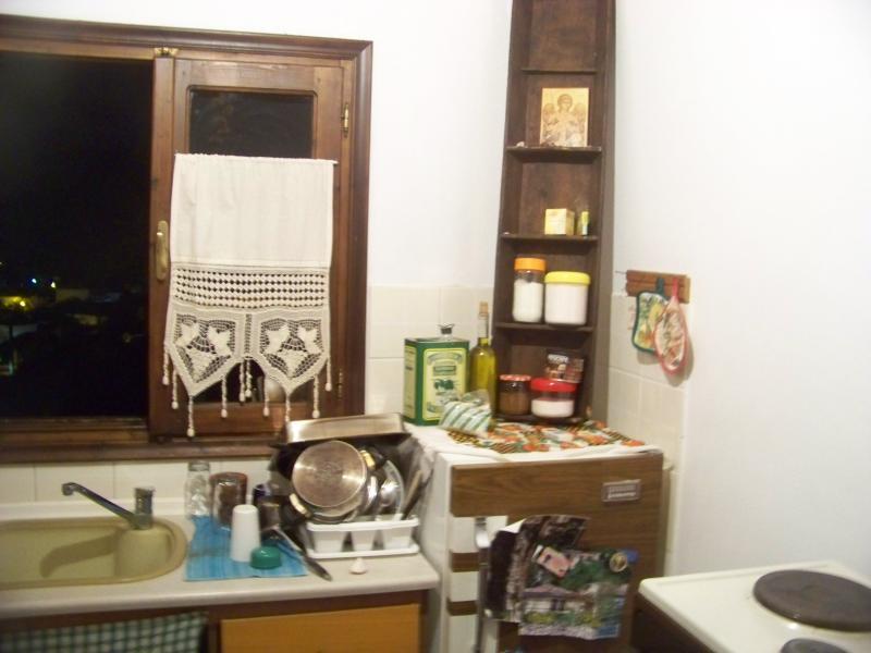 kitchen sink and fridge-fridger